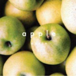 画像1: りんご〈王林〉ジャム(140g)
