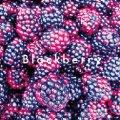 ブラックベリージャム(140g)